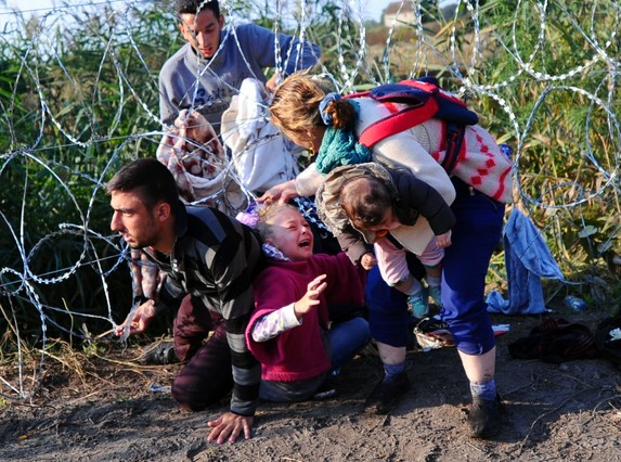 TOPSHOTS A young migrant's hair becomes stuck while crawling under a barbed fence with her family at the Hungarian-Serbian border near Roszke, on August 27, 2015. As Europe struggles with its worst migrant crisis since World War II, Hungary has become, like Italy and Greece, a